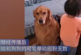 HIT NA INTERNETU Zlatni retriver štiti djevojčicu od njene ljutite majke (VIDEO)
