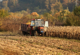 Mraz donio nevolje: Više od milijardu evra pomoći poljoprivrednicima
