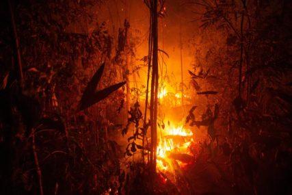 VATROGASCI NA TERENU Izbio veliki požar, jak vjetar otežava gašenje vatre