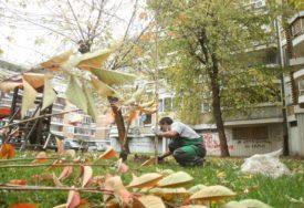 OČUVANJE ŽIVOTNE SREDINE Ozelenjavanje  gradskih površina uz Eko toplane