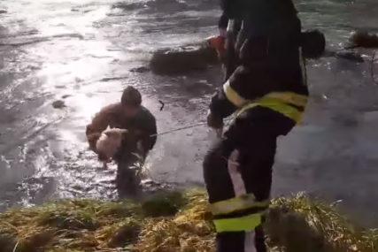 HUMAN GEST Banjalučki vatrogasci spasli psa iz Vrbasa (FOTO, VIDEO)