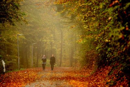 "Obilježavanje Svjetskog dana srca: Šetnja ""Stazom zdravlja"" na Banj brdu"