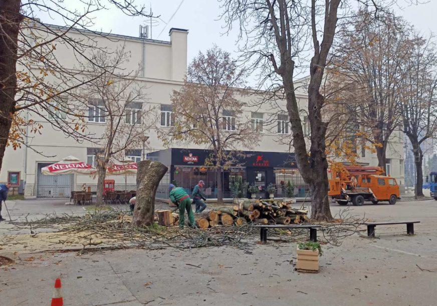 SJEČA U PARKIĆU Jedno stablo manje kod Narodnog pozorišta RS (FOTO)