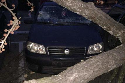 VJETAR HARA BANJALUKOM Stabla pala na auta u Boriku i kod parka Petar Kočić (FOTO)