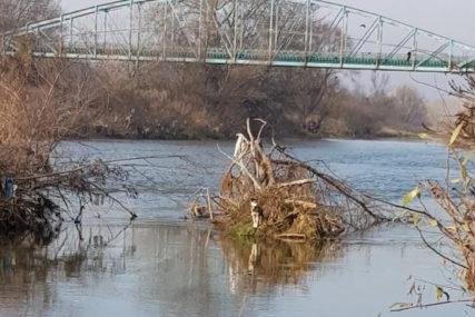 HUMAN GEST RIBOČUVARA Spasli promrzlog psa od sigurne smrti sa stabla nasred rijeke (FOTO)