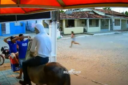 POLICIJA IH BRZO UHVATILA Pljačka kao u filmu, lopovi pobjegli na konju (VIDEO)