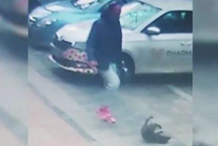 NASILNIK DOLIJAO POLICIJI Muškarac (47) uhapšen zbog krvničkog šutiranja psa