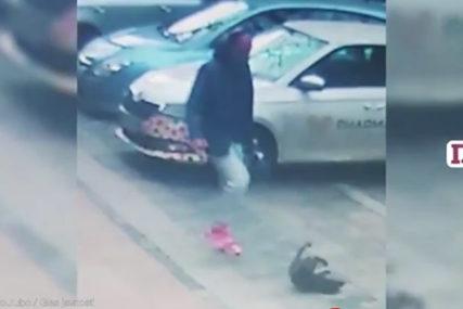 """""""ONA JE BOŽIĆNO ČUDO"""" Udomljeno štene koje je svirepi muškarac šutirao na ulici"""