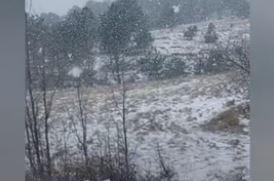 HOROR U ŠUMI Pronađena tijela dva smrznuta muškarca