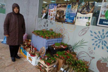 BOZIĆNI ARANŽMANI ZA SVAČIJI UKUS I DŽEP Prodavci se spremili za predstojeće praznike (FOTO)