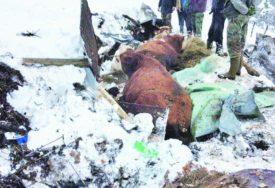 """""""UMALO NISAM UMRO OD TUGE, JAUKALE SU KAO RANJENICI"""" Mithadu su stradala goveda kada se pod teretom snijega URUŠILA ŠTALA"""