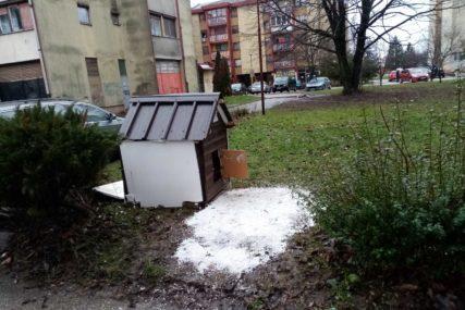 ČUPKO PODIJELIO KOMŠILUK Psu izgradili dom među zgradama u Prijedoru, ali neki misle da mu tu nije mjesto (FOTO)