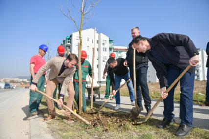 Gradonačelnik Stanivuković sa mještanima započeo proljećnu akciju: Listovi katalpe će krasiti Adu (FOTO)