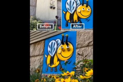 ULIČNI UMJETNIK Crtežima uljepšava gradske šahtove, stubove i kante za smeće