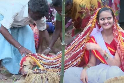 SMATRAJU DA TJERA MALER Djeca u Indiji sklapaju brak sa životinjama, a najčešći izbor je pas (VIDEO)