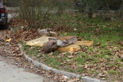 Tijelo pokriveno STARIM DUŠEKOM: Mrtvog mladića u žbunu NAŠAO POŠTAR (FOTO)