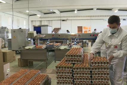"""""""Ove godine nije bilo izvoza jaja""""  Epidemija pogoršala uslove poslovanja za privrednike"""