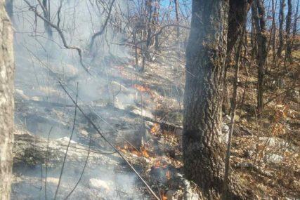 """Buktinja kod Kupresa: Vatra """"guta"""" visoku šumu, vjetar otežava gašenje"""