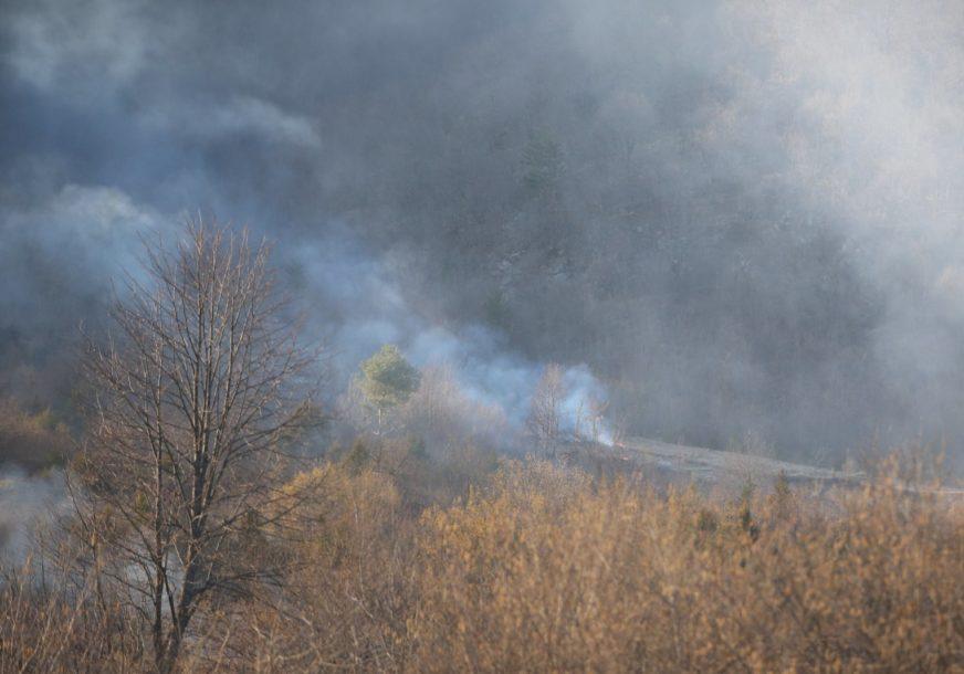 Veliki požar kod Gračanice: Gori 150 dunuma šume i niskog rastinja, teren nepristupačan