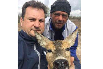 Zaplela se u ribarske mreže: Lovci spasili Srnu od utapanja u rijeci Drini