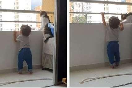 Brižna mačka RAZNJEŽILA SVE: Životinja zaštitila dječaka koji je stajao opasno blizu ruba balkona (VIDEO)