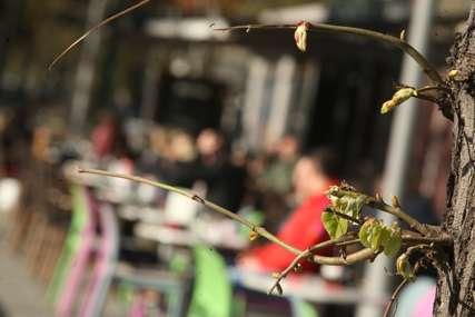 Nova mjera u Sloveniji: Ugostitelji moraju da provjeravaju kovid sertifikate svojih gostiju