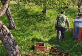 Pričinio štetu u pčelinjaku: Medvjed kod Kostajnice uplašio mještane (FOTO)