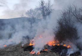 Vatrogasci imaju pune ruke posla: U Foči izbija sve više požara, razlog ljudska nepažnja i visoke temperature