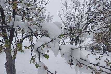 GDJE JE NESTALO PROLJEĆE  Krajina ponovo prekrivena snježnim prekrivačem (FOTO)