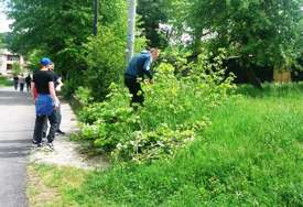 NEDJELJNA AKCIJA Mještani Miljevine očistili i uredili svoje naselje