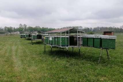 Fudbal u doba korone: Stadion u Lijevču pretvoren u pčelinjak (FOTO)