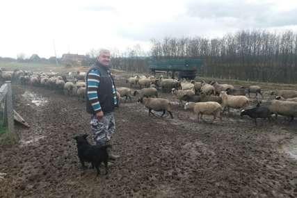POLJOPRIVREDNA BAJKA Na ranču Raševića šuma, jezero, ovce i pašnjaci