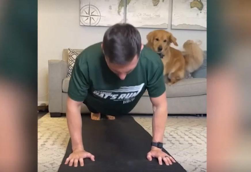 HIT NA INTERNETU Počeo je da radi sklekove, ali pas je to drugačije protumačio (VIDEO)