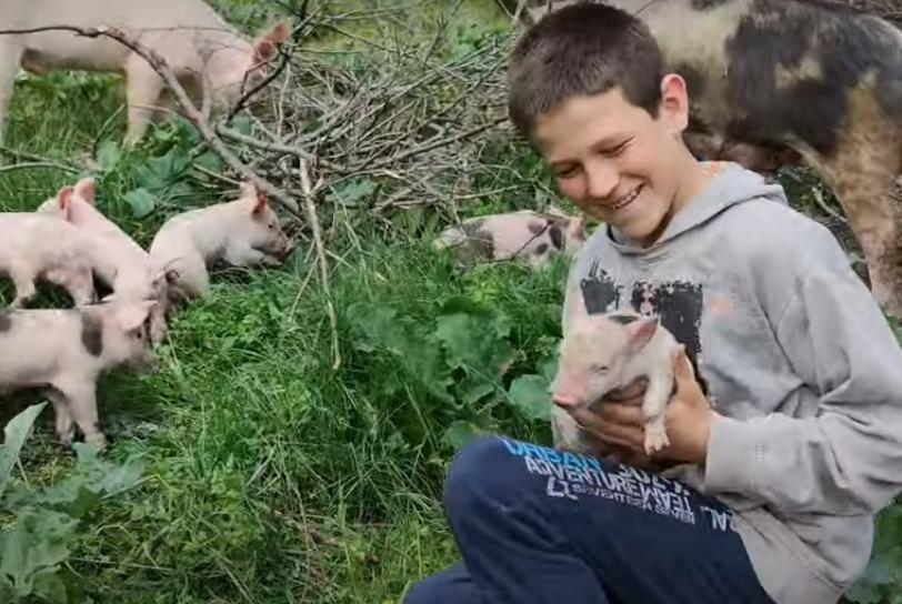 Imaju samo jednu skromnu želju: Braća Danijel i Jovica sa Kosova čuvaju stoku i sami kopaju kanale za vodu