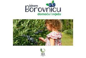 """""""Biraj borovnicu - domaću i svježu"""" Poljoprivredni klaster GLS povezuje proizvođače i potrošače"""