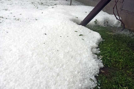 Šteta od leda u Milićima 1,1 milion KM, od toga na malinjacima 760.000 KM