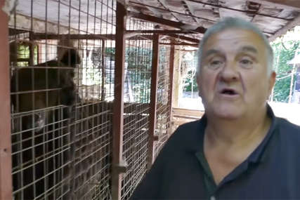 Jedu paprike i PIJU JOGURT: Penzioner već 15 godina brine o dva medvjeda (VIDEO)