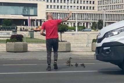 Scena o kojoj se PRIČA DANIMA: Vozač kombija zaustavio saobraćaj da patkice bezbjedno pređu ulicu