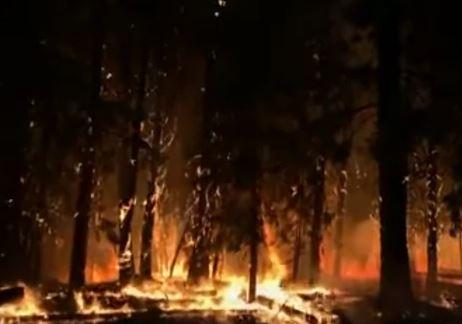 UPORNA VATRA NE STAJE Širom Amerike bukti 85 požara, povrijeđeno pet vatrogasaca (VIDEO)