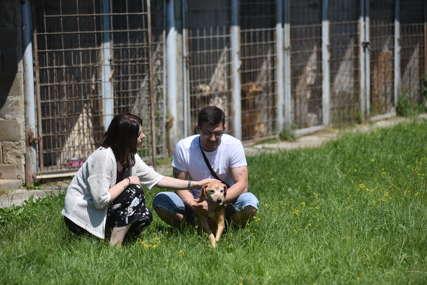 """Udruženje građana """"Kerber"""" okuplja veliki broj ljubitelja životinja"""
