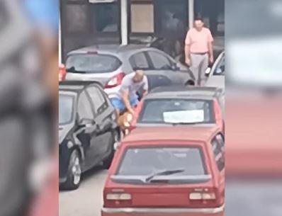 Prolaznici ŠOKIRANI PRIZOROM: Vlasnički pas i lutalica se poklali ispred ulaza u bolnicu, povrijeđen i vlasnik (VIDEO)
