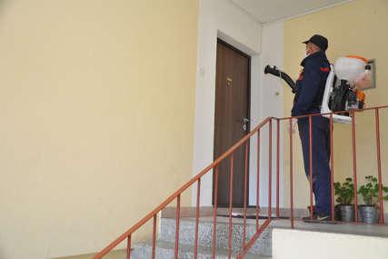 Stanari strahuju od zaraze: Visoke temperature nastanile žohare u zgrade
