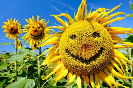 Ljeto iskoristite da zaštitite zube: Sunce pruža puno vitamina D