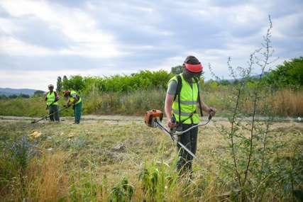 Radovi kreću od Banjalučkog polja: Počelo košenje ambrozije
