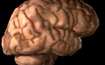 Djeluje jednostavno, probajte! Aktivnosti koje će vam pomoći da podmladite mozak