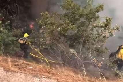 Gori borova šuma na Ugljanu: Požar buknuo u blizini Psihijatrijske bolnice, dio pacijenata evakuisan