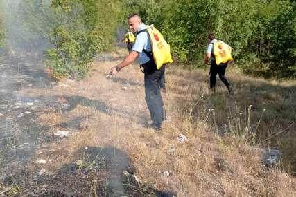 Požar u Ljubinju stavljen pod kontrolu: Zbog nepristupačnosti terena i dalje aktivan
