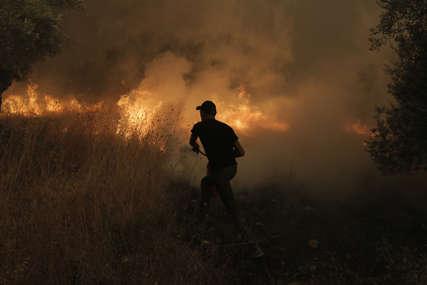 Grčki premijer smijenio dva ministra zbog požara