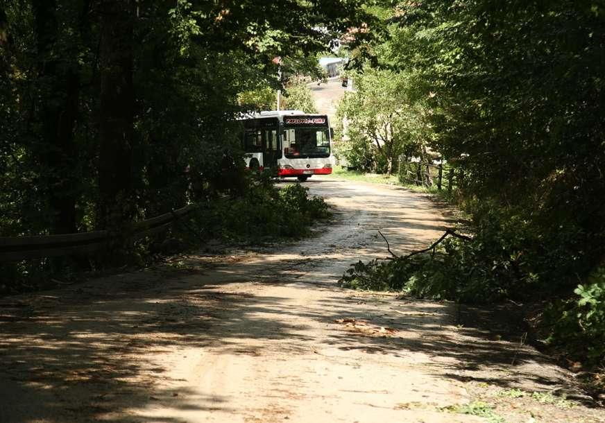 Vozači budite oprezni: Oborena stabla i grane na putu između Trapista i Česme
