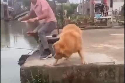 Pas je najbolji prijatelj ribica: Zlatni retriver pošao sa vlasnikom na pecanje, pa mu vratio sav plijen u rijeku (VIDEO)